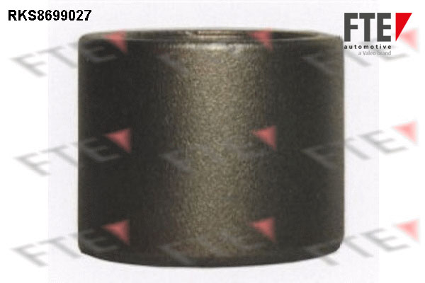 Piston etrier de frein FTE RKS8699027 (X1)