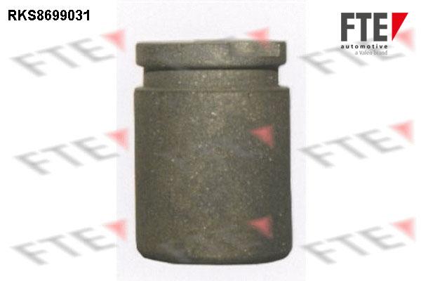 Piston etrier de frein FTE RKS8699031 (X1)