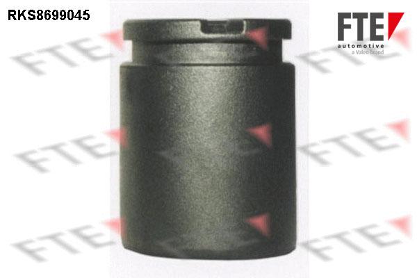Piston etrier de frein FTE RKS8699045 (X1)