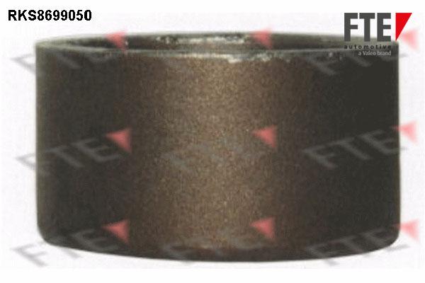 Piston etrier de frein FTE RKS8699050 (X1)