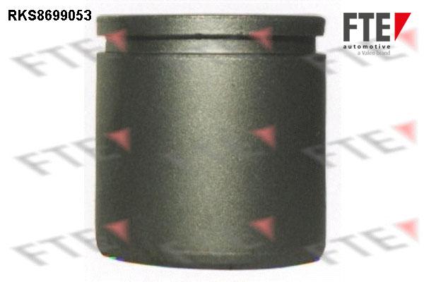 Piston etrier de frein FTE RKS8699053 (X1)