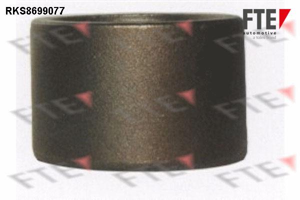 Piston etrier de frein FTE RKS8699077 (X1)