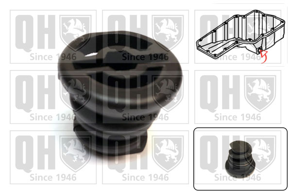 Bouchon de vidange QUINTON HAZELL EM4848 (X1)