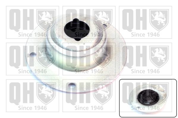 Coupelle d'amortisseur QUINTON HAZELL EMR1785 (X1)