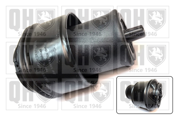 Divers compresseur pneumatique (suspensions) QUINTON HAZELL EMR4878 (X1)