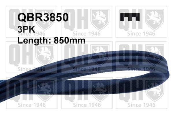 Courroie d'accessoire QUINTON HAZELL QBR3850 (X1)