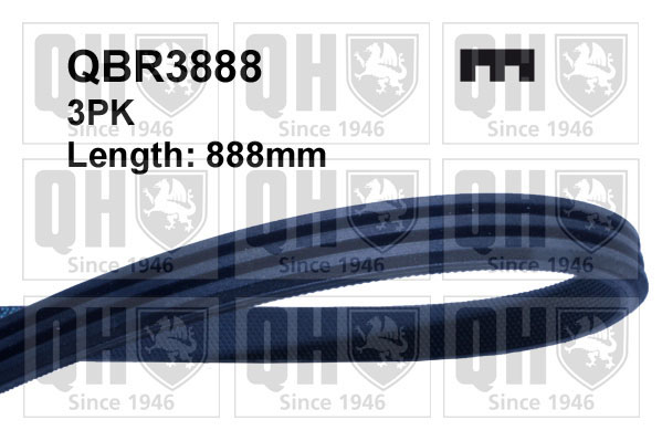 Courroie d'accessoire QUINTON HAZELL QBR3888 (X1)