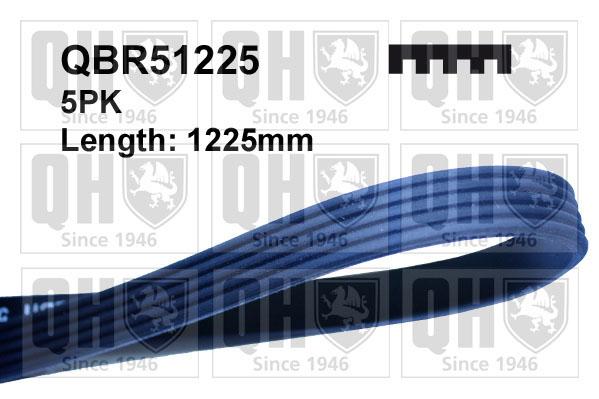 Courroie d'accessoire QUINTON HAZELL QBR51225 (X1)