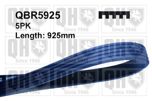 Courroie d'accessoire QUINTON HAZELL QBR5925 (X1)