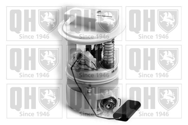 Unité d'injection de carburant QUINTON HAZELL QFP909 (X1)