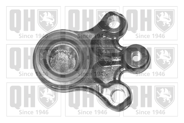 Rotule de suspension QUINTON HAZELL QSJ3394S (X1)