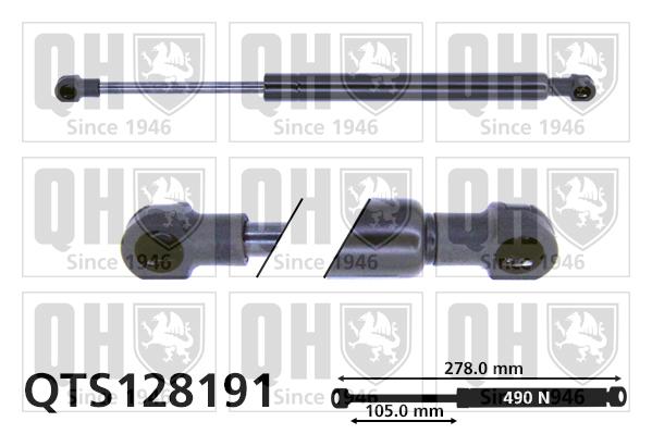 Verins ouvertures QUINTON HAZELL QTS128191 (X1)