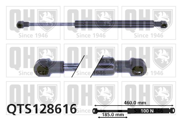 Verin de lunette QUINTON HAZELL QTS128616 (X1)