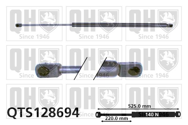 Verin de lunette QUINTON HAZELL QTS128694 (X1)