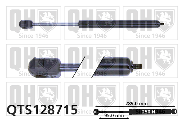 Verin de lunette QUINTON HAZELL QTS128715 (X1)