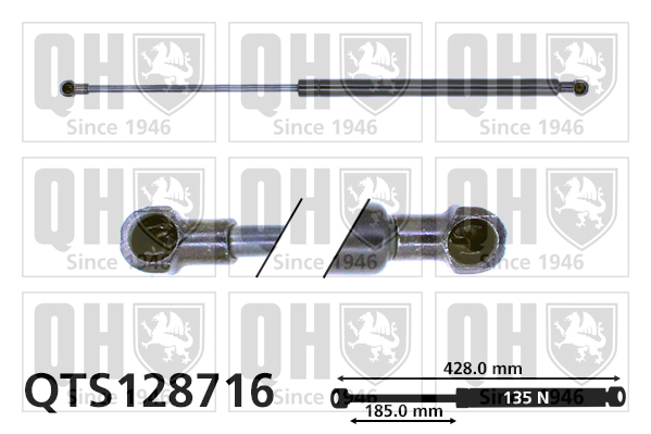 Verin de lunette QUINTON HAZELL QTS128716 (X1)