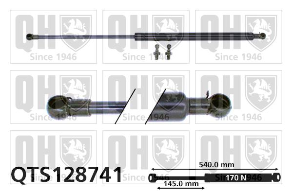 Verin de lunette QUINTON HAZELL QTS128741 (X1)