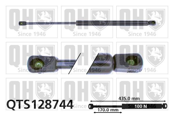 Verin de lunette QUINTON HAZELL QTS128744 (X1)