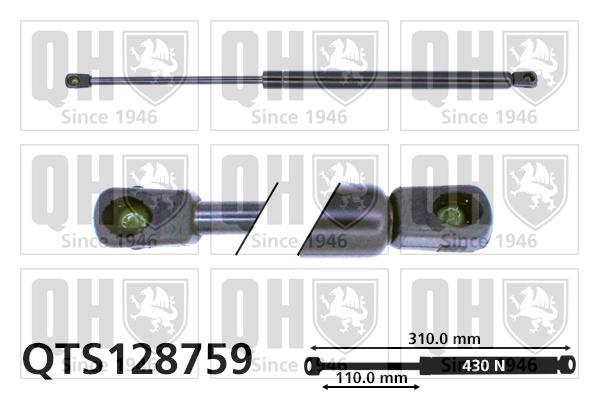 Verins ouvertures QUINTON HAZELL QTS128759 (X1)