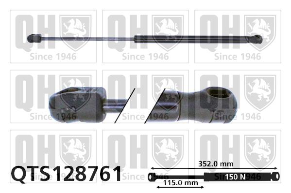 Verin de lunette QUINTON HAZELL QTS128761 (X1)