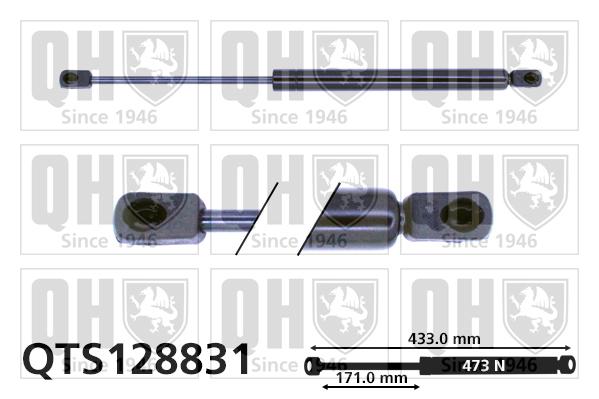 Verin de capot QUINTON HAZELL QTS128831 (X1)
