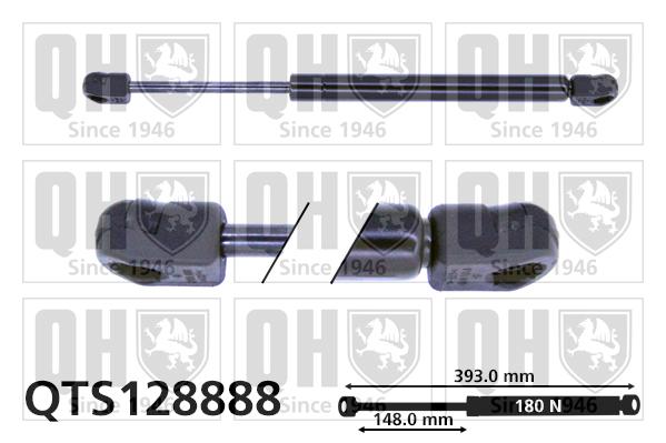 Verin de lunette QUINTON HAZELL QTS128888 (X1)