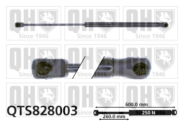 Verin de capot QUINTON HAZELL QTS828003 (X1)