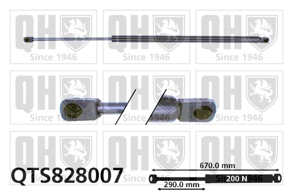 Verin de capot QUINTON HAZELL QTS828007 (X1)