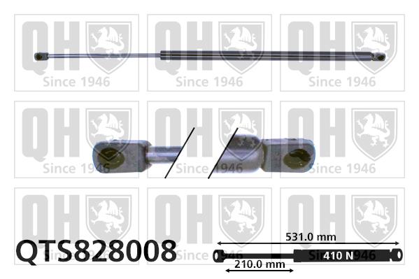 Verin de coffre QUINTON HAZELL QTS828008 (X1)