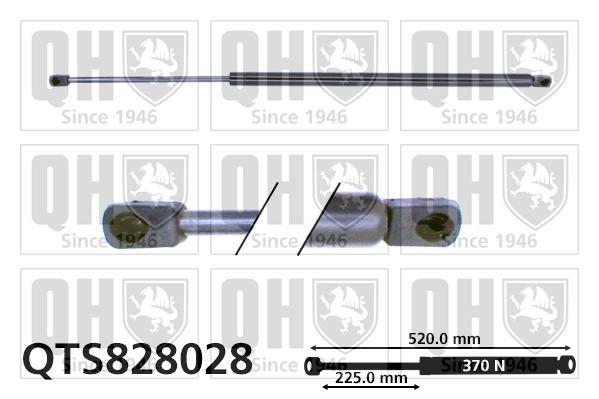Verin de coffre QUINTON HAZELL QTS828028 (X1)