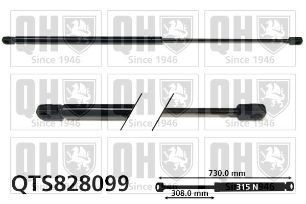 Verin de capot QUINTON HAZELL QTS828099 (X1)