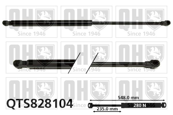 Verin de coffre QUINTON HAZELL QTS828104 (X1)