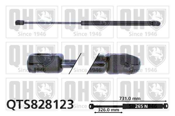 Verin de capot QUINTON HAZELL QTS828123 (X1)