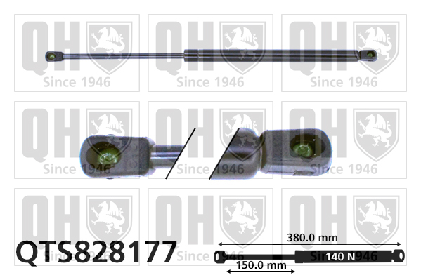 Verin de lunette QUINTON HAZELL QTS828177 (X1)