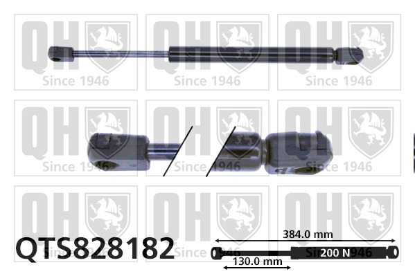 Verin de lunette QUINTON HAZELL QTS828182 (X1)