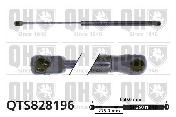 Verin de capot QUINTON HAZELL QTS828196 (X1)