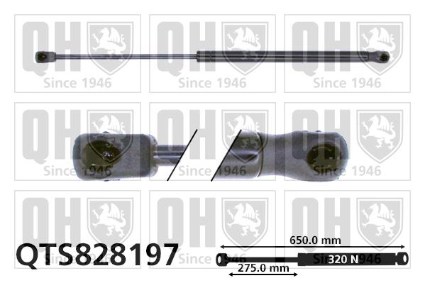 Verin de capot QUINTON HAZELL QTS828197 (X1)