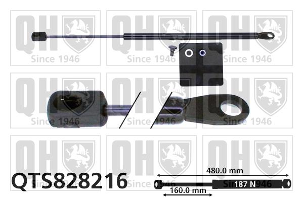 Verin de lunette QUINTON HAZELL QTS828216 (X1)