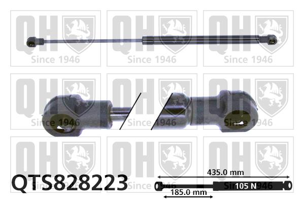 Verin de lunette QUINTON HAZELL QTS828223 (X1)