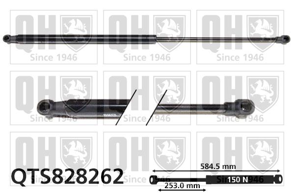 Verin de lunette QUINTON HAZELL QTS828262 (X1)