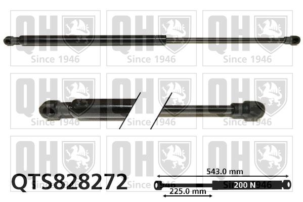 Verin de lunette QUINTON HAZELL QTS828272 (X1)