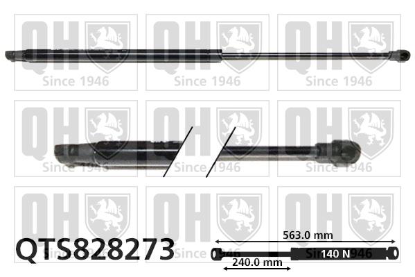 Verin de lunette QUINTON HAZELL QTS828273 (X1)