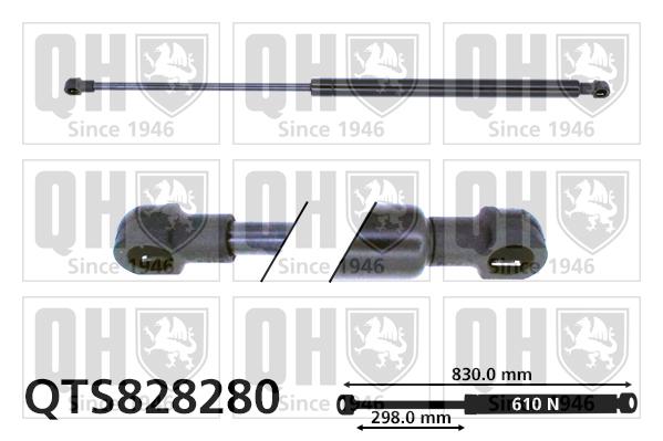 Verin de coffre QUINTON HAZELL QTS828280 (X1)