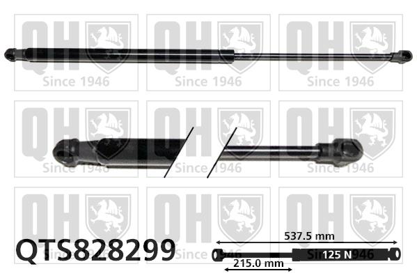 Verin de lunette QUINTON HAZELL QTS828299 (X1)