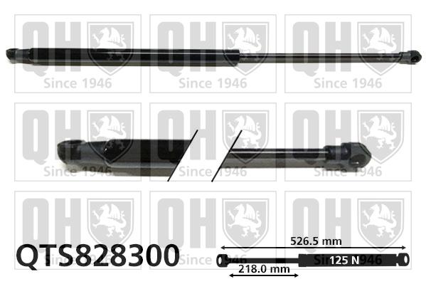 Verin de lunette QUINTON HAZELL QTS828300 (X1)