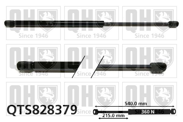 Verin de lunette QUINTON HAZELL QTS828379 (X1)