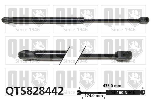 Verin de lunette QUINTON HAZELL QTS828442 (X1)