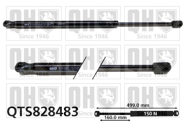 Verin de lunette QUINTON HAZELL QTS828483 (X1)