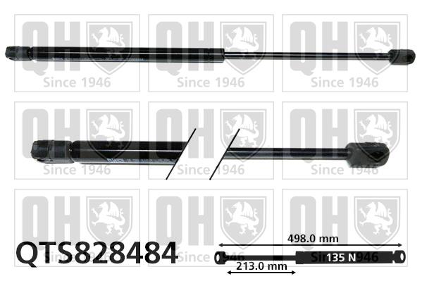 Verin de lunette QUINTON HAZELL QTS828484 (X1)