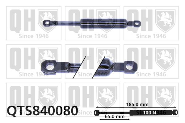 Autres verins QUINTON HAZELL QTS840080 (X1)
